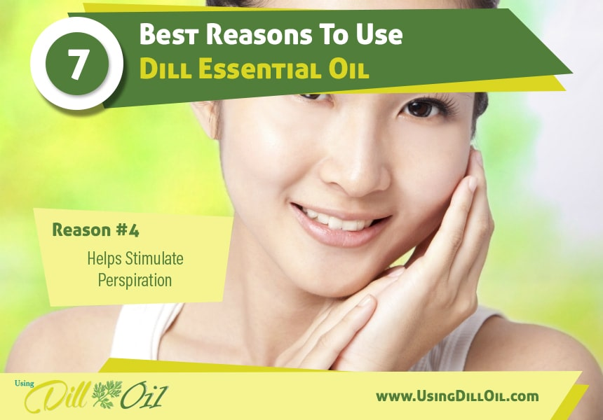 dill oil benefits