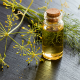 7 Amazing Uses Of Dill Essential Oil
